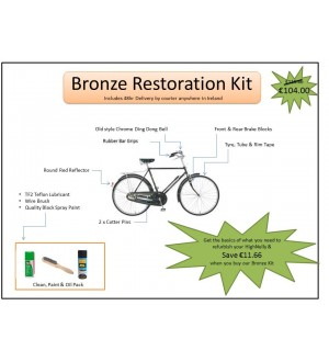 Bronze Restoration kit