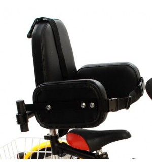 Trike back rest & side supports